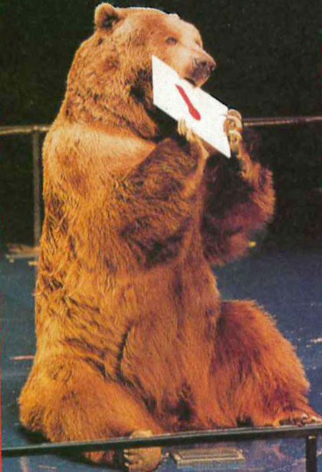 """Bart the bear holds an envelope naming a winner at the 1998 Academy Awards. Bart himself was once nominated to receive an Oscar for The Bear. In that movie Bart had to be gentle to another bear's cub. (Most bears are too aggressive to do so.) That's as close as any animal has ever come to winning an Oscar. Animal actors are classified as props, not characters."" -National Geographic World, May 1999"