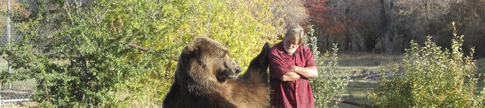 bart-the-bear-header